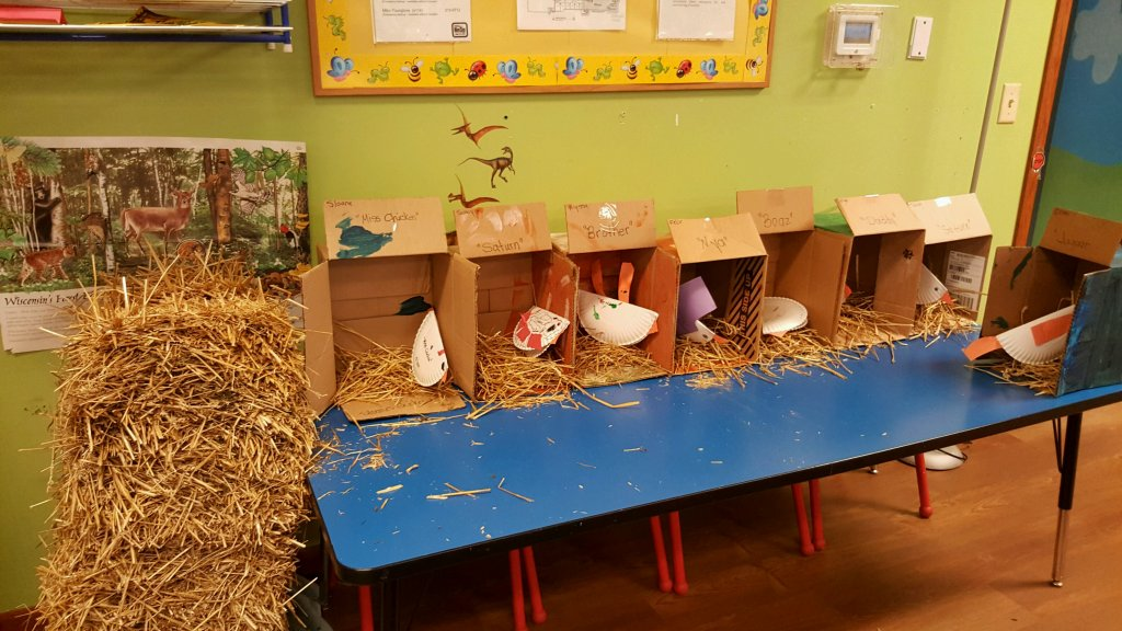 The preschoolers added straw to their chicken coops today.